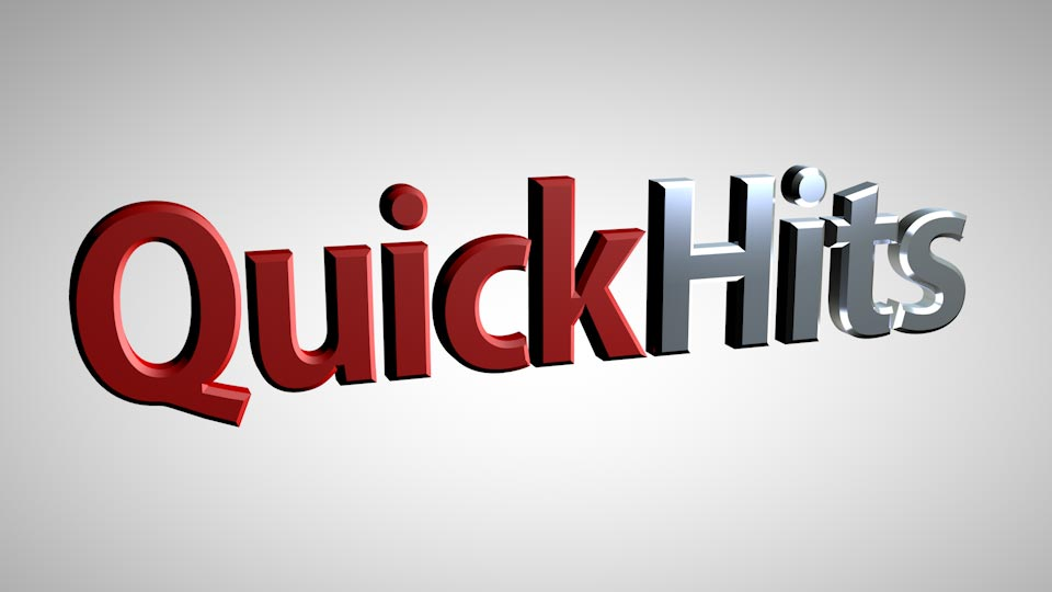 Quick Hits:  Reducing Wildlife Hazards Around Water Sources at the Airport